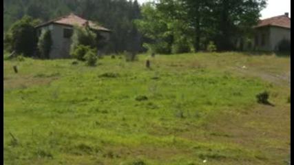 коне край Чамла