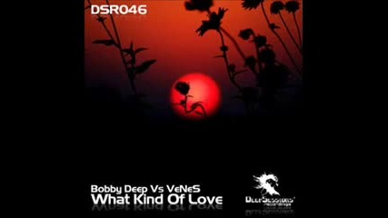 Bobby Deep amp; Venes - What Kind Of Love (kostas Skretas amp Sergi Rmx)