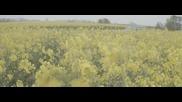 Tusks - Dreamcatcher ( Официално Видео )