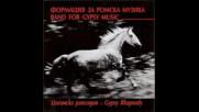Формация за ромска музика - Циганска 2001г.