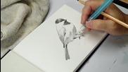 Рисуване на птичка с акварелни моливи