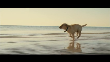 Marley & Me Trailer High Qality Video