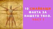 10 смайващи факта за нашето тяло