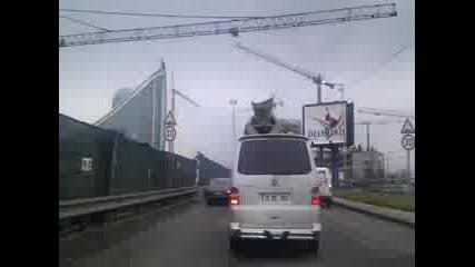 Кой прави задръстванията по Цариградско шосе в София?