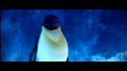 Танца на Пингвините - Pinguin Dance