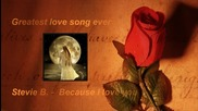 Stevie B - Because I love you (превод )