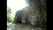 Cliff Jumping • Освежаване