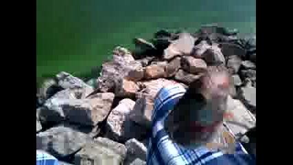 Врачански язовир- Костур 250 грама