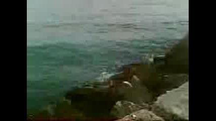 Каварна - най - хубавия курорт на морето!