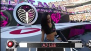 Wwe Wrestlemania 31 Aj Lee & Paige vs The Bella Twins