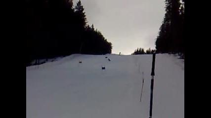 Kostadin Kaferinov Ski