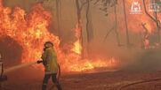 Australia: Wild bushfires raging on in Perth region as dozens of homes destroyed