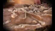 Смъртоносният капан на динозаврите - Българско аудио