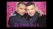 Тони Стораро и Азис - Колко сме пили 2014 Dj Zmei