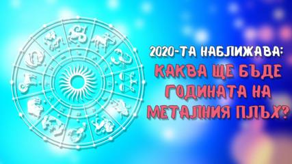 2020 ще е годината на Металния Плъх! Ето каква ще е тя за различните зодии!