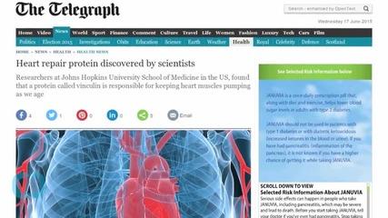 Важно откритие може да промени лечението на сърдечни заболявания