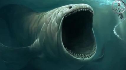 5 загадки в океаните, за които няма обяснение !