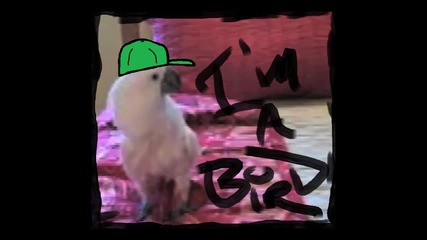 Im A Bird Mothaf*