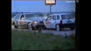 Меrcedes S Class Vs. Opel Corsa