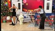 Ciguli / Binaz / Gulben Show / 31.01.2013