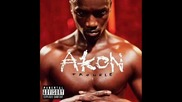 2010 Akon feat. David Gueta - party animal Превод