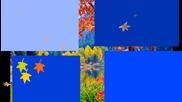 """golden Autumn"" ... ... (music - Fariborz Lachini) ... ..."