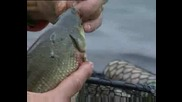 Риболов на шаран в обрасли и силно затревени водоеми на плувка. Series 3 Episode 8