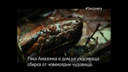 Речни чудовища - Амазонски убийци