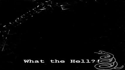 Metallica - The Struggle Within