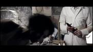 Calvin Harris - Im Not Alone [ Великобритания / 2009 ]