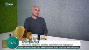 Апитерапия - науката, която изучава приложението на пчелните продукти