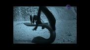 Емилия - Ти Си Луд [ High - Quality ]