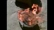 Изгарянето На Една Тонколона