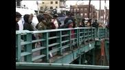 Заблуден делфин се озова в мръсен канал на Ню Йорк и почина