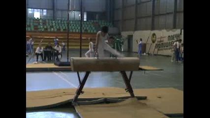 Теди на Купа България - 08 - кон с гривни