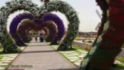 Dubai Miracle Gardens авторски