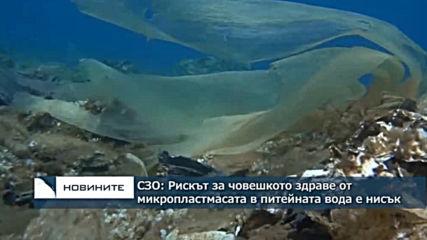 СЗО: Рискът за човешкото здраве от микропластмаса в питейната вода е нисък