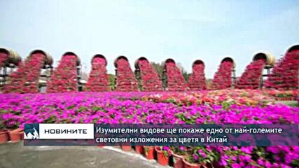Изумителни видове ще покаже едно от най-големите световни изложения за цветя в Китай