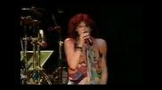 Aerosmith - Amazing(live)