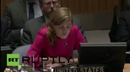 "USA: US will apply pressure until Ukraine is a ""stable democracy"" - Samantha Power"