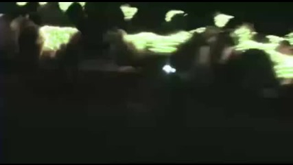 Amazing Sheep Light