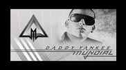 Intenso Daddy Yankee 2010...