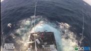 300 килограмов марлин скача на лодката