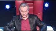 Damir Sejdinovic - Kafanska pevacica