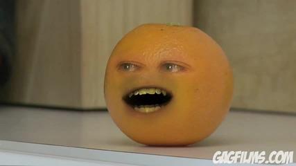 [hq] Портокал се подиграва на тиква