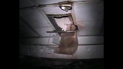 Избухналия реактор в Чернобил Маршрут № 5