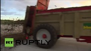 Belgium: 'Furious farmers' block roads & pour dung  in low price protest