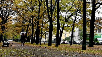 Светлана Аверочкина - Дождь