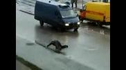 Ето Какво Прави Руската Водка С Хората