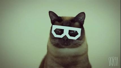 Най великия котешки Dubstep :d